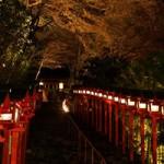 京都の紅葉2014 貴船神社ライトアップと洛北エリア