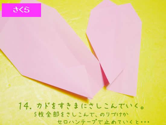 サクラの折り方14